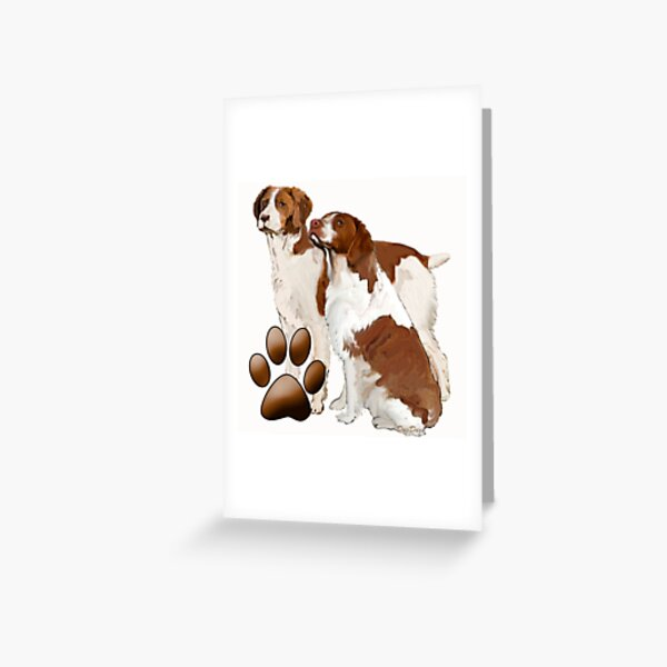 Two Brittany Spaniels Greeting Card