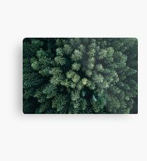 Forest Drone - Landscape Photography Metal Print