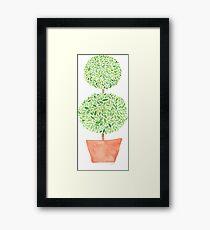 Topiary Framed Print