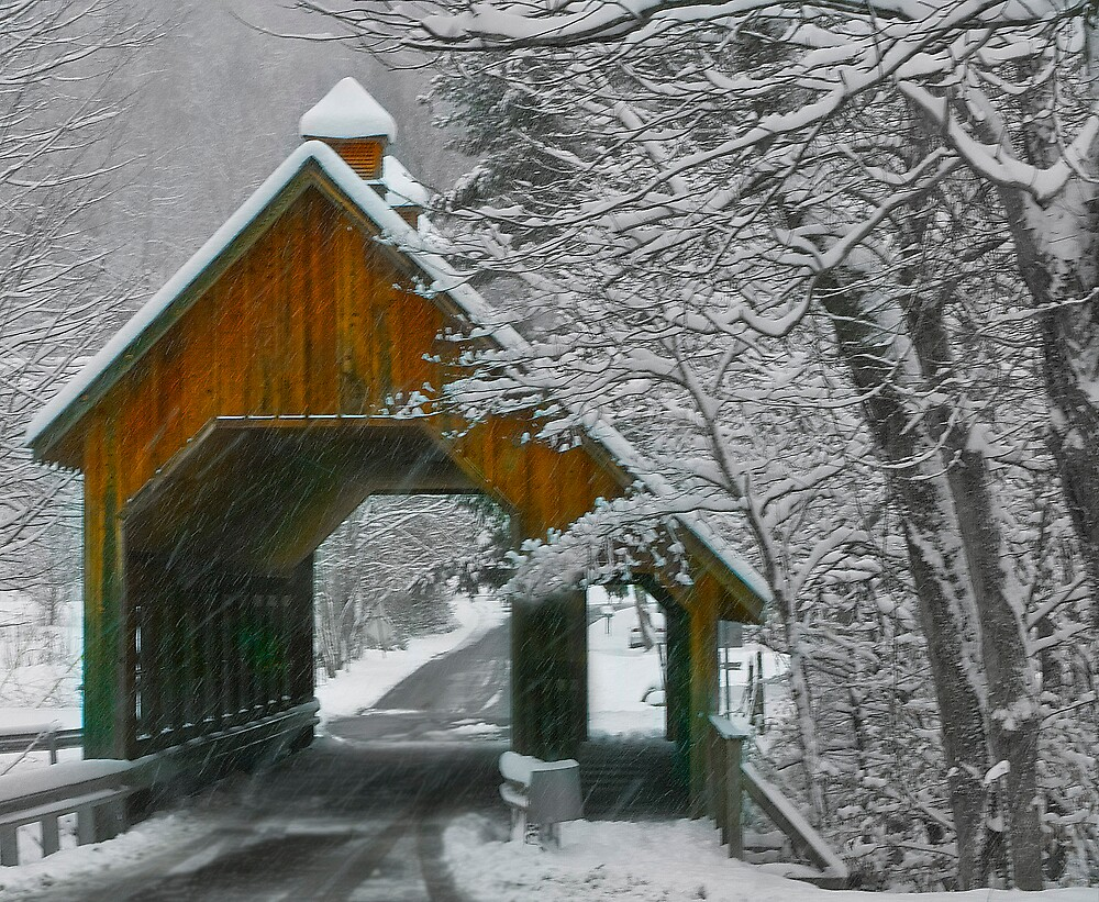 Emerts Cove Covered Bridge #1 by BlueSmoke