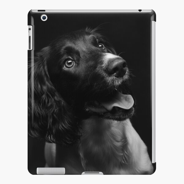Working english springer spaniel iPad Snap Case