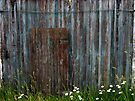 Weathered Door by Aaron Campbell