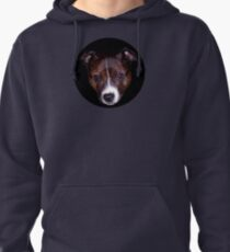 What you looking at?? Pullover Hoodie