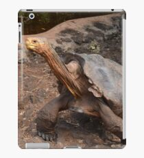Super Diego iPad Case/Skin