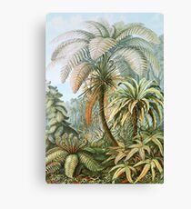 Vintage Fern and Palm Tree Art Canvas Print