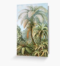 Vintage Fern and Palm Tree Art Greeting Card
