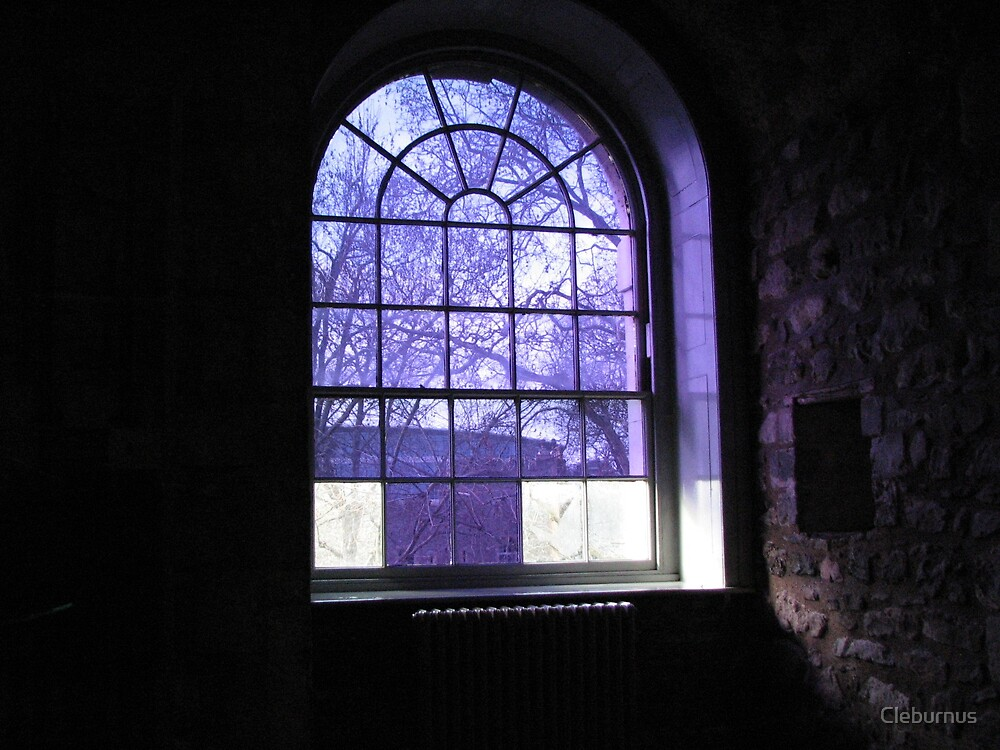 Window of a King by Cleburnus