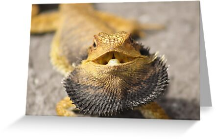 Angry Beardy by Peter Pevy