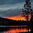 Mirror Lake Sunset by Valentina Gatewood