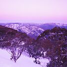 Mt buller vic  by Ty Cooper