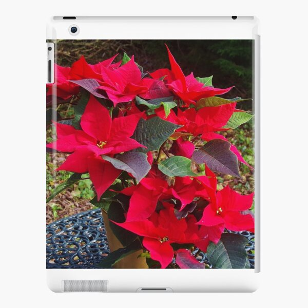 Poinsettias for Christmas iPad Snap Case
