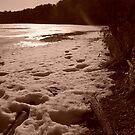 Winter Beach III by XtomJames