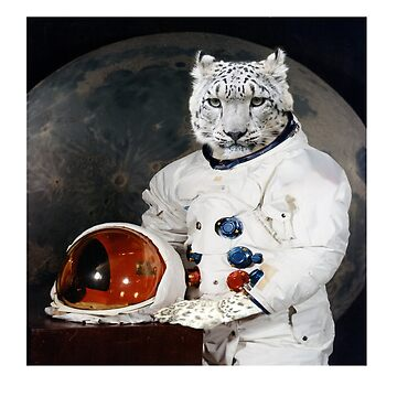 One Giant Leap for Meow Kind by Nate4D7