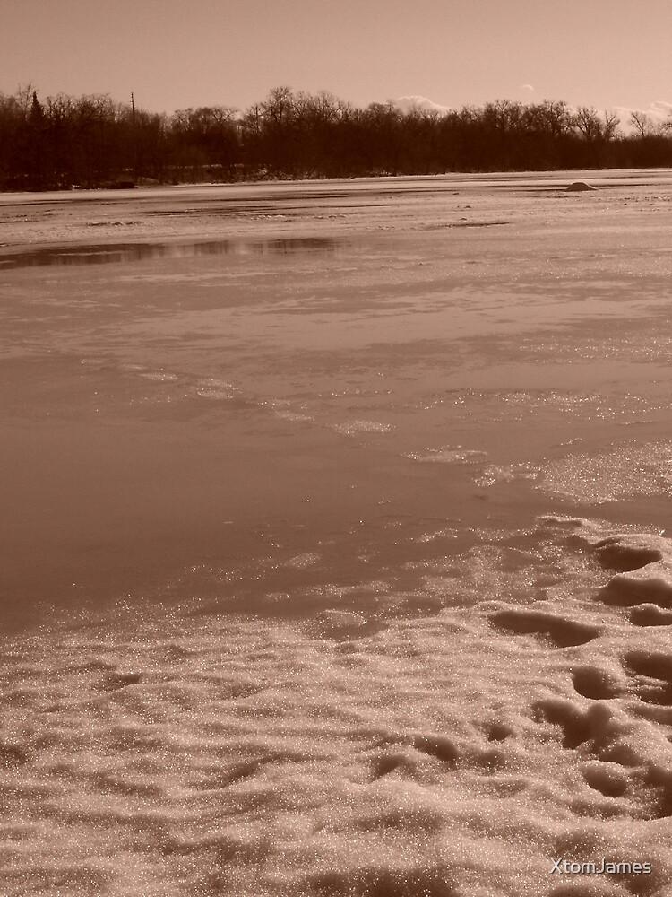 Winter Beach IV by XtomJames