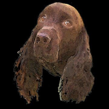 Field Spaniel - Portrait by geegeetee11