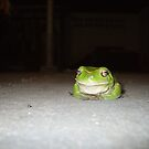 Frog by aggieeck