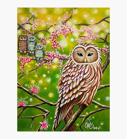 Garden of Owls Photographic Print