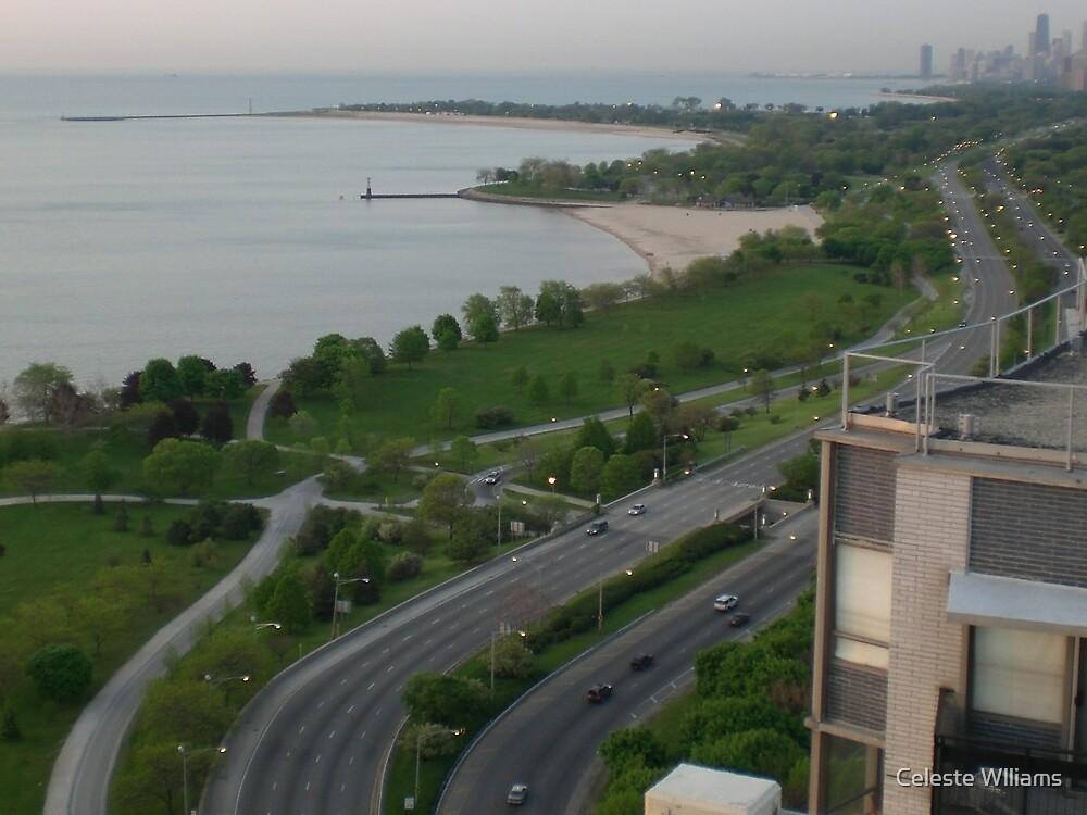 Lakeshore Drive by Celeste Wlliams