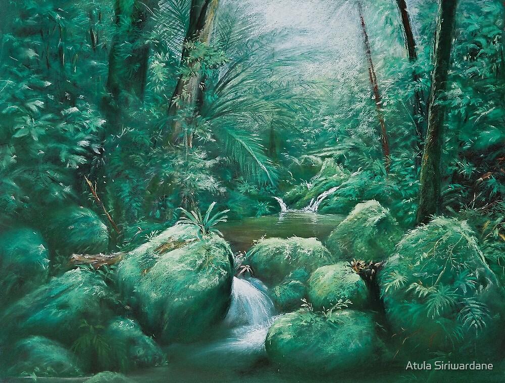 Rain Forest -High Res by Atula Siriwardane