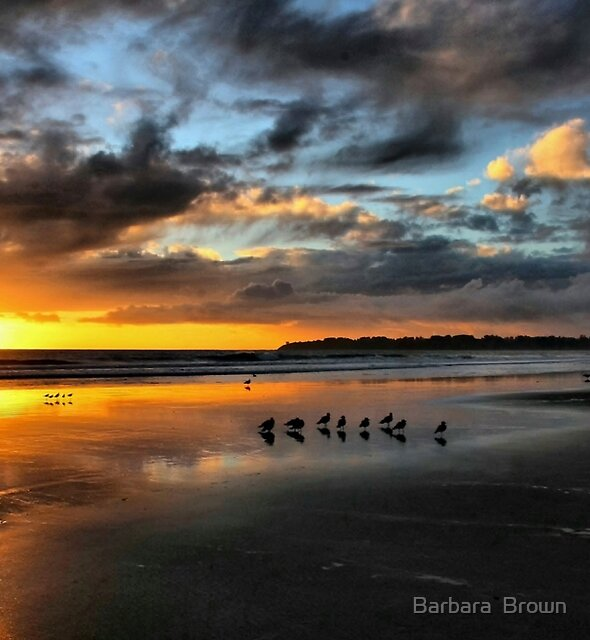 Sunset at Stinson by Barbara  Brown