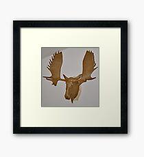 Moose Cardboard Framed Print