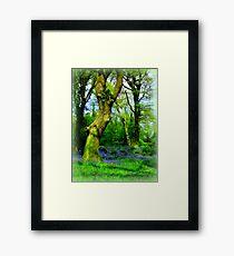 Fairy Playground Framed Print