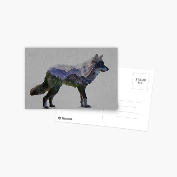 Mountain Wolf Postcard