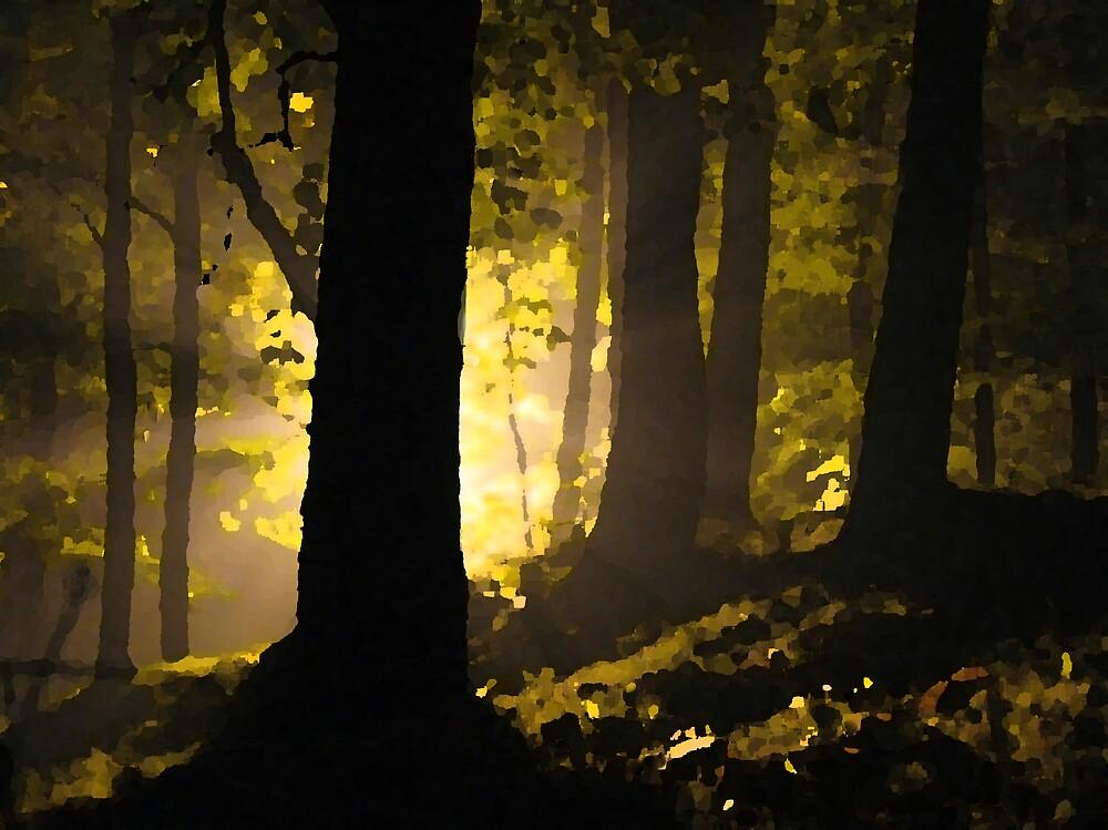 Peep Of Light by PiccirilloArt