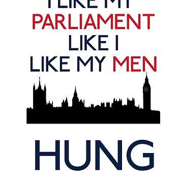 I Like My Parliament Like I Like My Men - Hung  by TheVeeboo