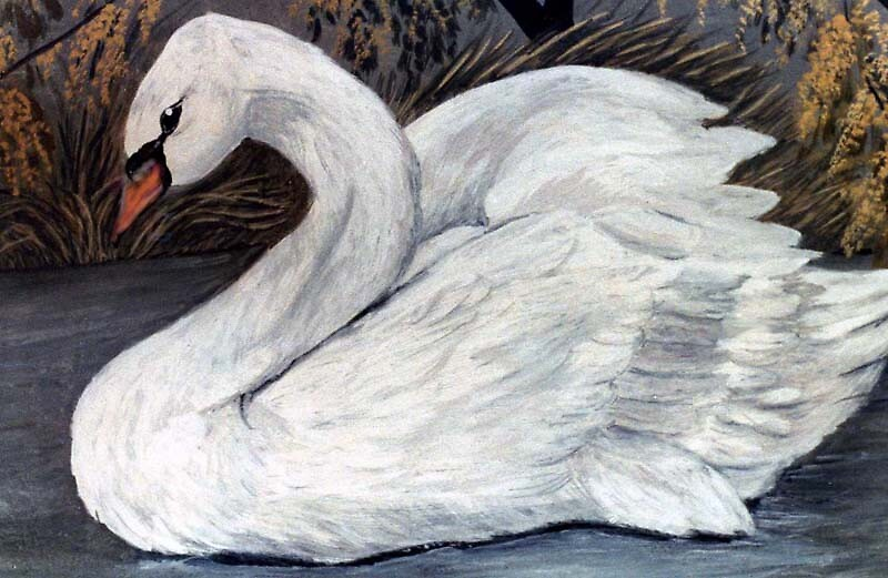 Swan by MayWebb