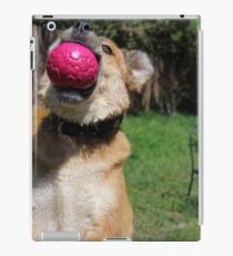 Dog with Ball iPad Case/Skin