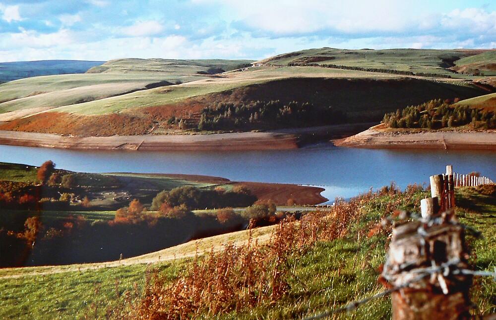 Reservoir in Wales by avocet