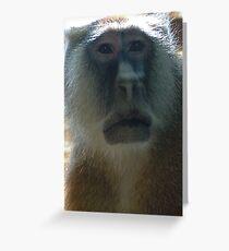 Primate Greeting Card