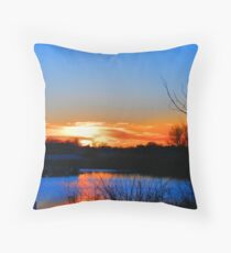 Colorful View Throw Pillow