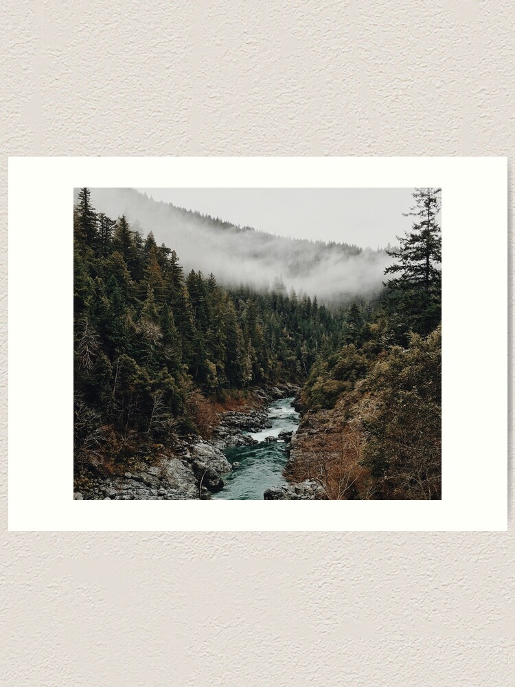 Alternate view of River in the Forest Art Print