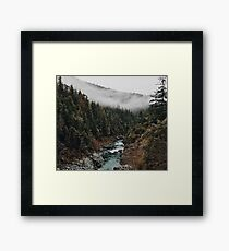 River in the Forest Framed Print