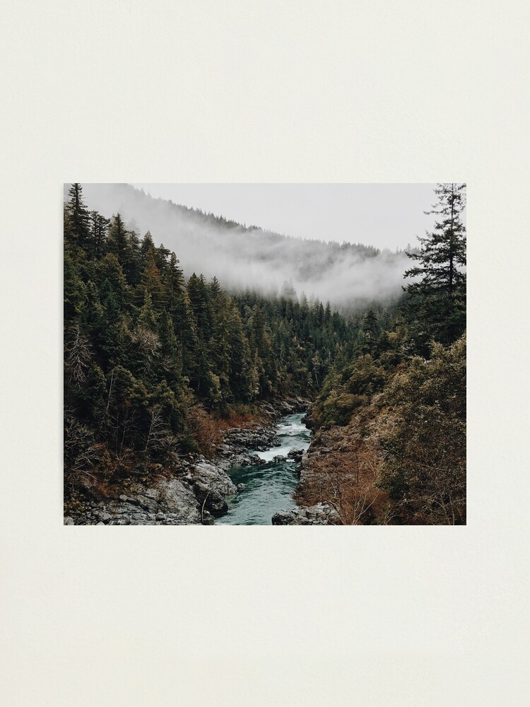Alternate view of River in the Forest Photographic Print