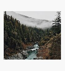 River in the Forest Photographic Print