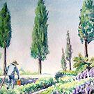 Tuscan Gardener by Carolyn Bishop