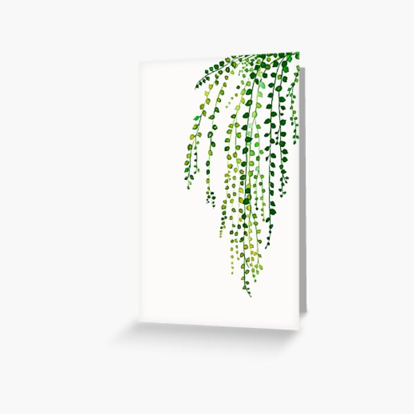 Green string of pearls ink illustration botanical nature Greeting Card