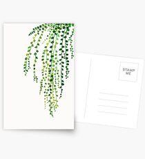 Grüne Schnur der Perlentintenillustration botanische Natur Postkarten
