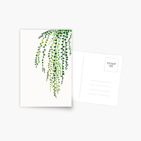 Green string of pearls ink illustration botanical nature Postcard