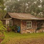 Dave's Cool Shed by Michael Matthews