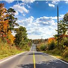 Autumn Road to Nowhere by John Velocci