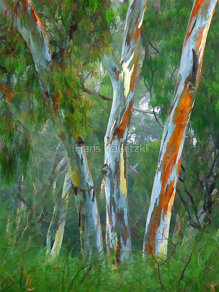 0686 Painted Trees by Hans Kawitzki