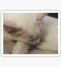 Sleepy kitty time Sticker