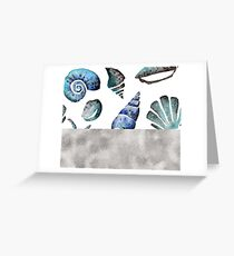 South pacific sea shells - silver graphite Greeting Card