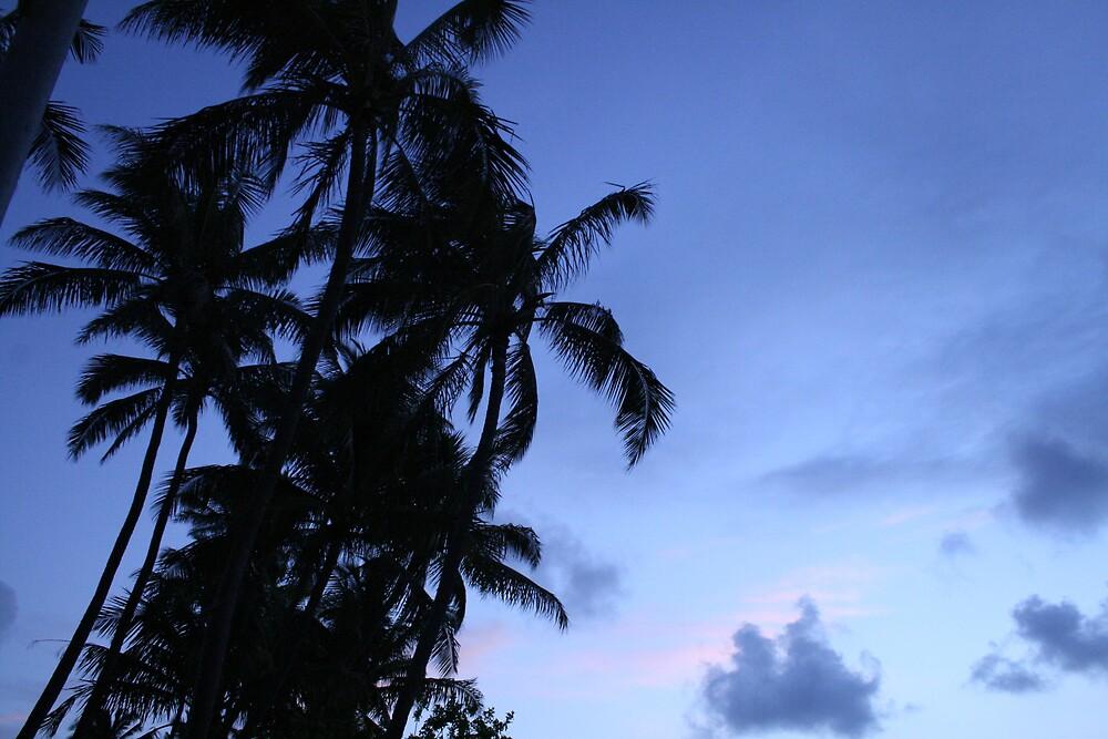 Hawaiian sunset by Bardiebar