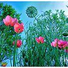 Flower Garden by bchrisdesigns