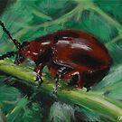 Bug3 by Daniel Kriz